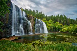 Заставки Forest Falls, Savie, South Africa