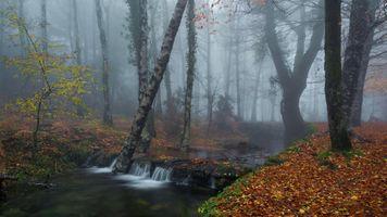 Заставки водопад, туман, ручей