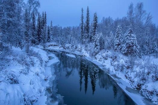 Фото бесплатно Alaska, зима, река, снег, деревья, сугробы, лёд, лес, природа, пейзаж