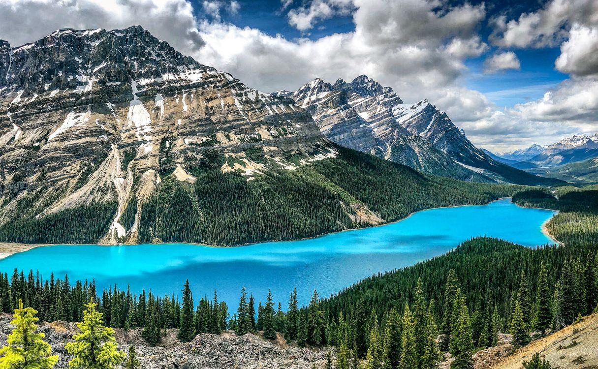 Free photo landscape, clouds, forest - to desktop