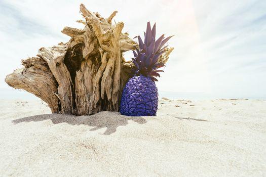 Фото бесплатно пляж, коряги, песок