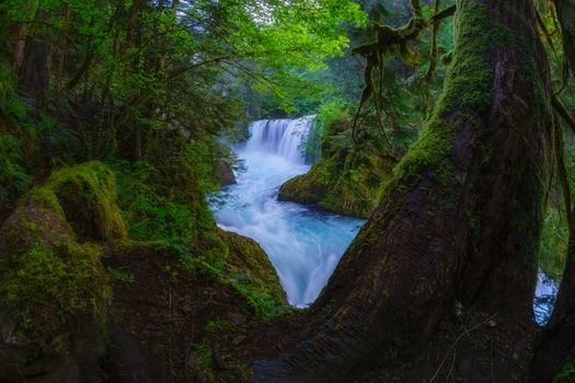 Photo free Spirit Falls, Columbia River Gorge, Washington