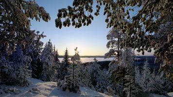 Фото бесплатно закат, зима, снег, озеро, деревья, природа, пейзаж