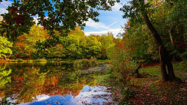 Photo free Keston, England, autumn