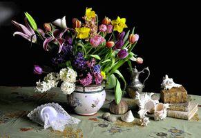 Бесплатные фото натюрморт,цветы,букет,ваза,стол,книги,ракушки
