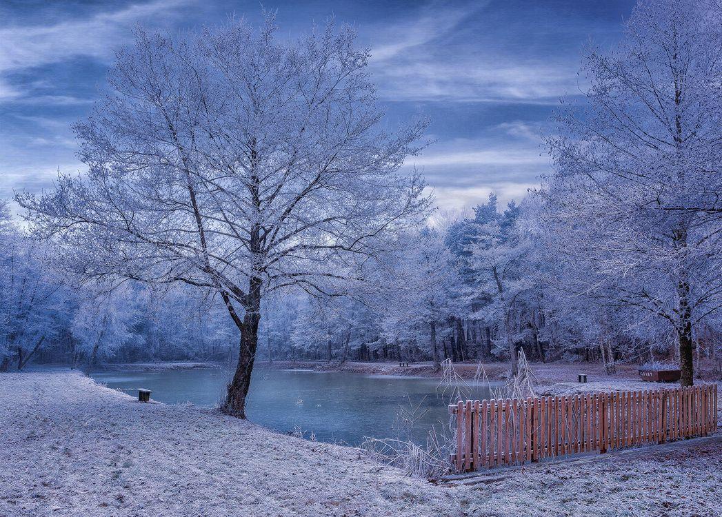 Обои зима, осень, парк картинки на телефон