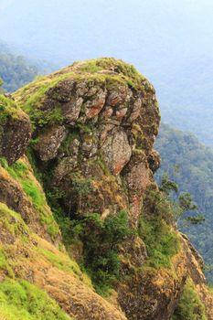 Фото бесплатно вагамон, гора, зеленый