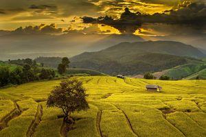 Фото бесплатно Ban Papongpieng, Chiang mai, Тайланд