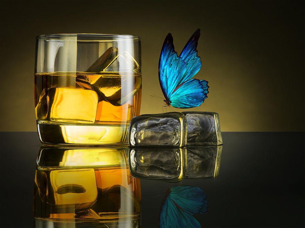 Фото бесплатно напиток, бокал, лёд, бабочка, напитки - скачать на рабочий стол