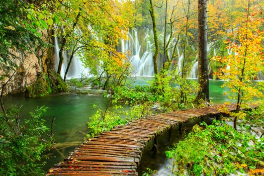 Фото бесплатно дорожки, Плитвицкие озера, деревья