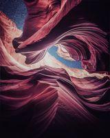 Заставки природа, розовый, изобразительное искусство