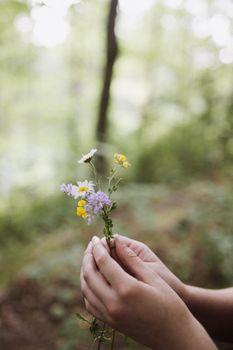 Бесплатные фото девушка,дикий цветок,цветок,руки,лес