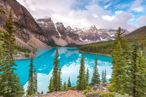 Photo free Alberta, trees, Lake Moraine