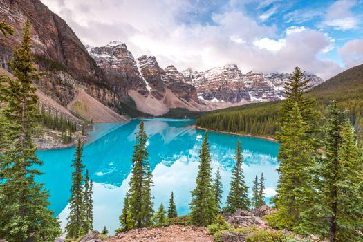 Фото бесплатно Альберта, деревья, Озеро Морейн