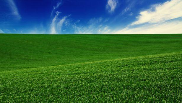 Бесплатные фото поле,трава,газон,холмы,небо,облака,природа,пейзаж