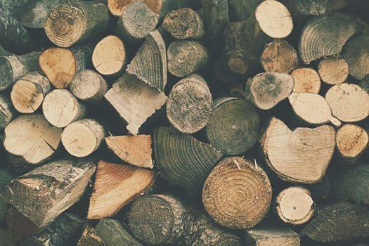 Фото бесплатно дерево, текстура, лист
