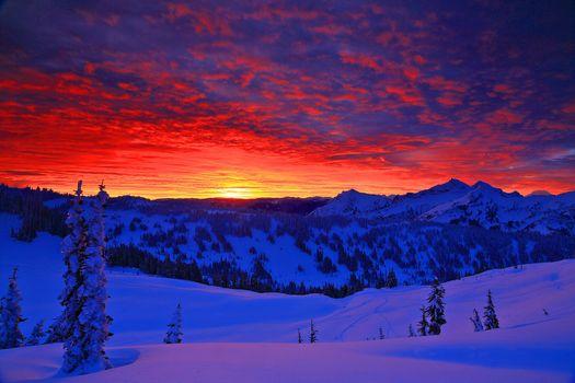 Фото бесплатно Mt Rainier National Park, Washington, закат