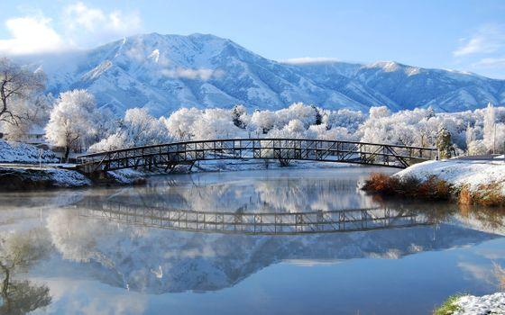 Фото бесплатно ОК, зима, норм