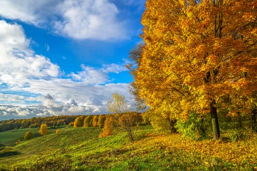 Photo free autumn colors, October in summer, Russia