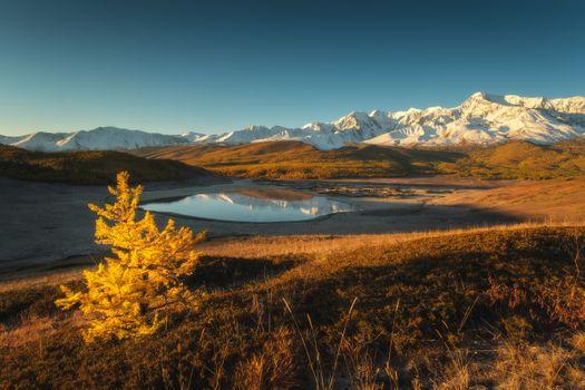 Altai Mountains in autumn · free photo