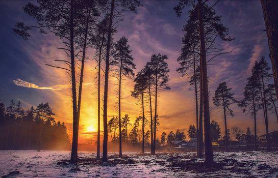 Фото бесплатно дома, закат, природа