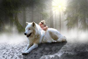 Бесплатные фото белый волк,девушка,лес туман,деревья,природа,art,фотошоп