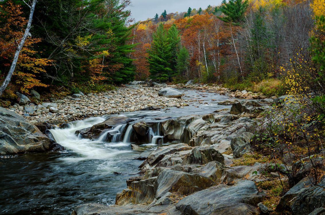 Обои осень, река, водопад картинки на телефон