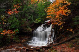 Бесплатные фото осень,водопад,речка,лес,деревья,природа,осенние краски