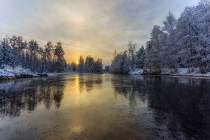 Бесплатные фото Глазкогенский заповедник,Arvika,Швеция,река,зима,лес,деревья