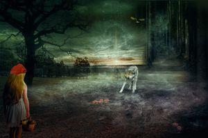 Бесплатные фото сумерки,поле,деревья,небо,серый волк,фантазия,фотошоп