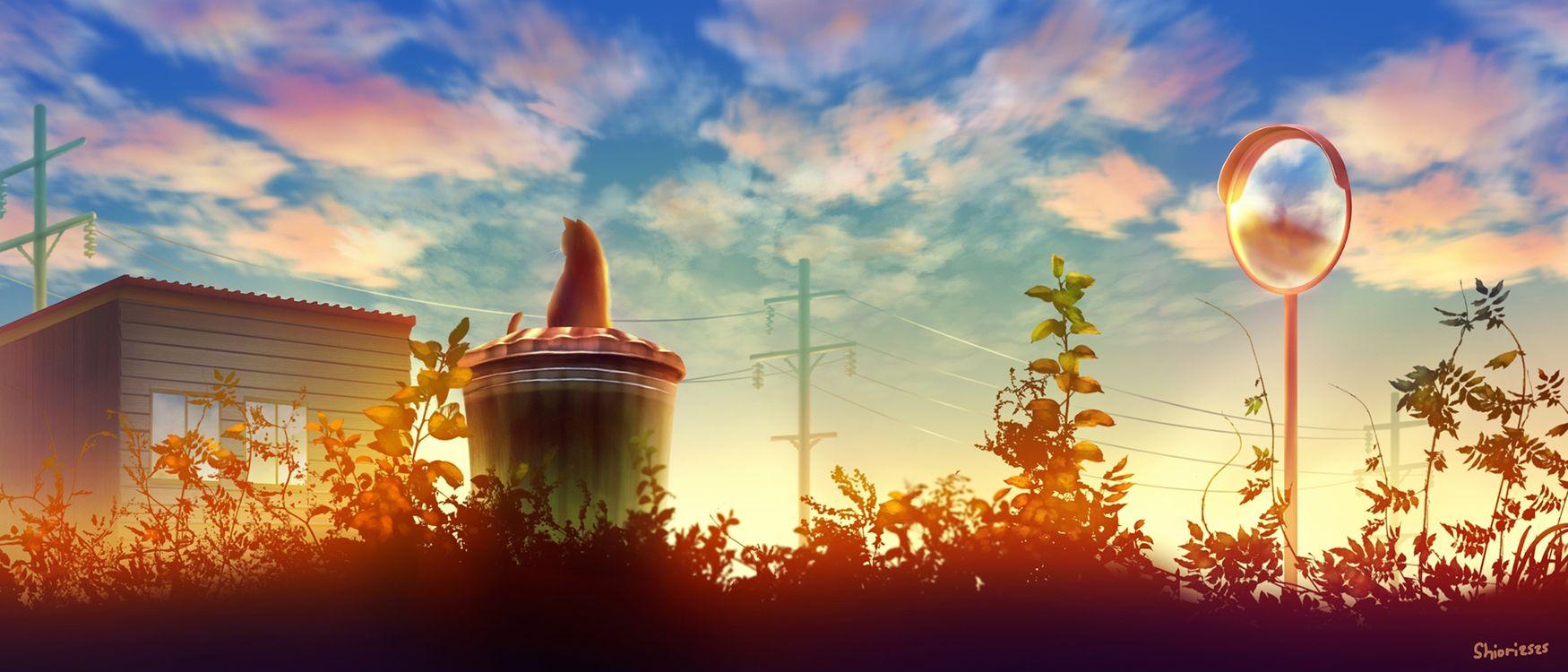 Фото бесплатно аниме пейзаж, котенок, корзина - на рабочий стол