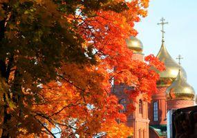 Бесплатные фото осень,клен,листья,листопад,церковь,купола