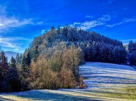 Бесплатные фото Зимний лес на горе Тирберг в Тироле,Австрия,зима,лес,деревья,холм,природа