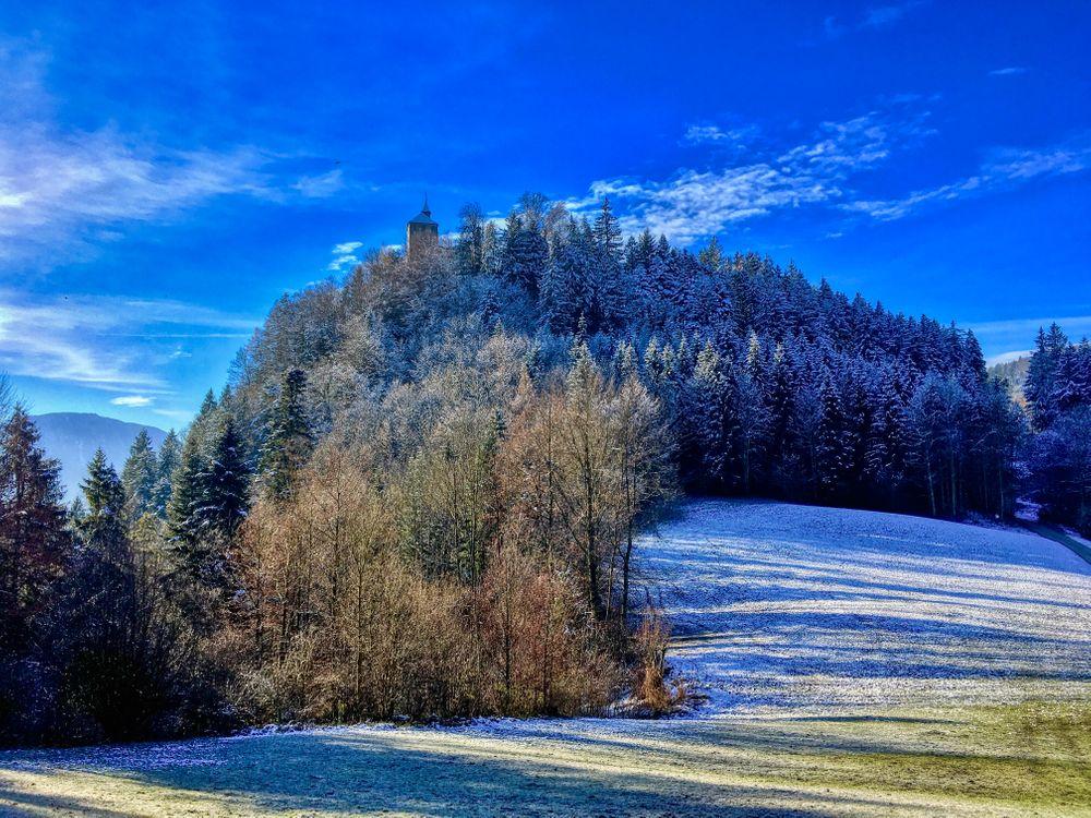 Фото бесплатно Зимний лес на горе Тирберг в Тироле, Австрия, зима, лес, деревья, холм, природа, пейзаж, пейзажи