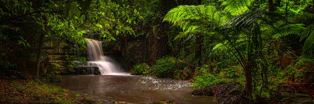 Photo free Located in Lane Cove National Park, Australia, waterfall