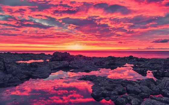 Фото бесплатно облака, побережье, цветы, природа, океан, отражение, море, морские пейзажи, небо, рассветы, закаты