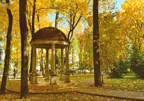 Бесплатные фото Осень,парк,беседка