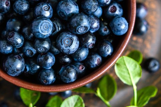 Blueberries in a bowl · free photo