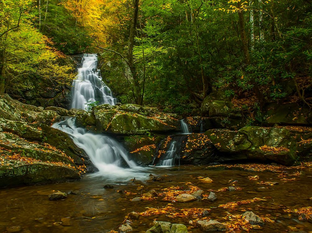 Free photo Great Smoky Mountains National Park, autumn, waterfall - to desktop