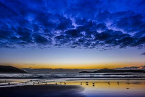 Фото бесплатно птицы, чайки, пейзаж
