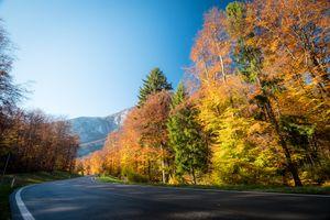 Фото бесплатно осень дорога, деревья, горы