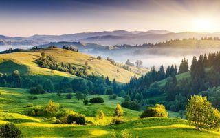 Заставки туман, пейзаж, обои