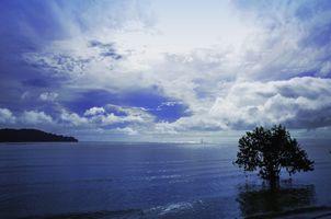 Фото бесплатно море, голубой, облако