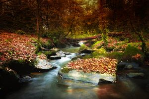 Фото бесплатно камни, река, поток