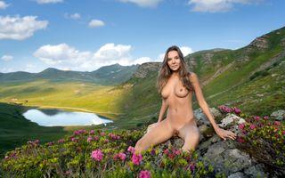 Photo free lake, tits, outdoors