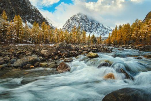 Altai autumn · free photo