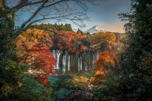 Фото бесплатно Япония, осень, гора Фудзи, Fujisan, водопад, Shiraito, пейзаж, путешествовать, лес, дерево, трава, небо