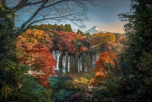 Бесплатные фото Япония,осень,гора Фудзи,Fujisan,водопад,Shiraito,пейзаж,путешествовать,лес,дерево,трава,небо