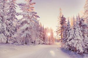 Фото бесплатно зима, дорога, лучи солнца