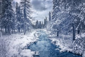 Фото бесплатно зима, лес, река